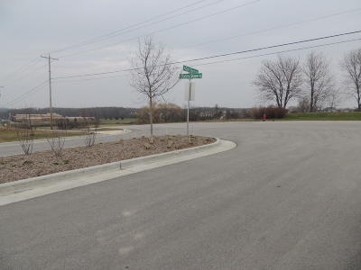 New Berlin Residential Lots & Land For Sale: Lt24 Thompson Hollow Ct
