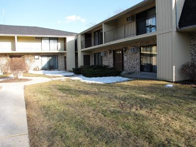 Milwaukee County Condo/Townhouse For Sale: 1652 S 115th Ct #1