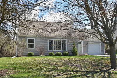 Single Family Home Active Contingent With Offer: 1140 Apple Tree Ln