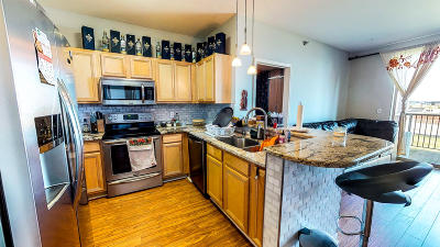 Milwaukee County Condo/Townhouse For Sale: 4110 S Lake Dr #238