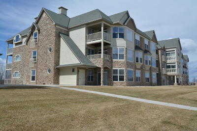 Franklin Condo/Townhouse Active Contingent With Offer: 6995 S Riverwood Blvd #209