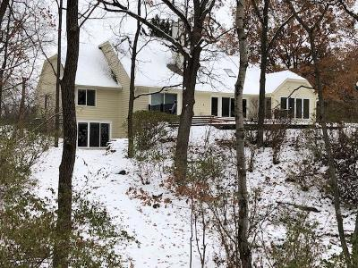 Delafield Single Family Home For Sale: N1w31139 Wildwood Trl