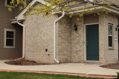 Condo/Townhouse Active Contingent With Offer: 18575 Emerald Cir #C