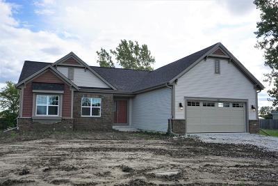 Racine Single Family Home For Sale: 1205 Ellis Ave #Lt63