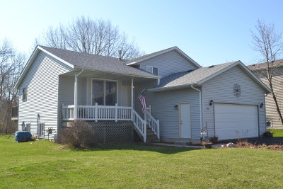 Pleasant Prairie Single Family Home For Sale: 11103 4th Ave