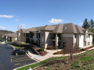 West Bend Condo/Townhouse For Sale: 460 N Silverbrook Dr #104