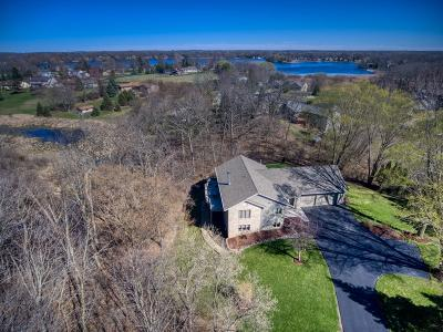 Wind Lake Single Family Home Active Contingent With Offer: 7125 Deerpath Ln