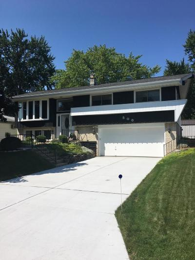 South Milwaukee Single Family Home Active Contingent With Offer: 508 Willow Ln
