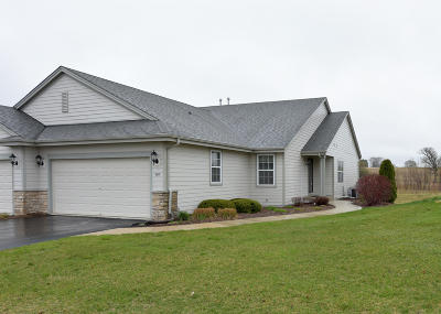 Slinger Condo/Townhouse Active Contingent With Offer: 620 Farmstead Ct