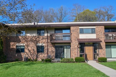 Pewaukee Condo/Townhouse Active Contingent With Offer: 321 Park Hill Dr #E