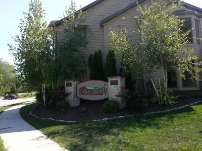 Sheboygan Falls Condo/Townhouse Active Contingent With Offer: 110 2nd St #3
