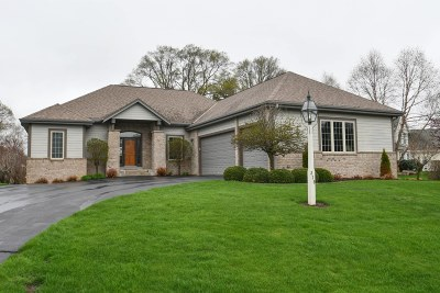 Dousman Single Family Home For Sale: 316 Still Water Ct