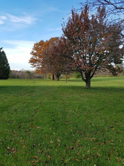 Mukwonago Residential Lots & Land Active Contingent With Offer: 1370 Main St