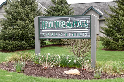 Pewaukee Condo/Townhouse Active Contingent With Offer: N30w23082 Pineview Way #2