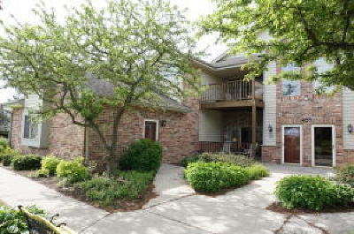 Saukville Condo/Townhouse Active Contingent With Offer: 620 Hillcrest Rd #F
