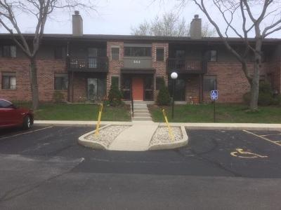 Pewaukee Condo/Townhouse Active Contingent With Offer: 352 Park Hill Dr #F