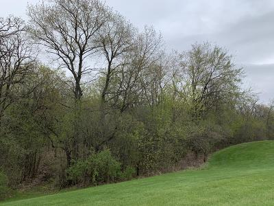Mukwonago Residential Lots & Land For Sale: Lt19 Whitetail Meadows Dr
