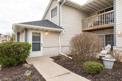 Pewaukee Condo/Townhouse Active Contingent With Offer: W240n2532 E Parkway Meadow Cir #8