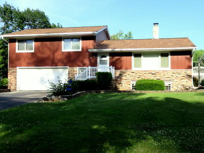 Single Family Home For Sale: N8124 Rock River Rd