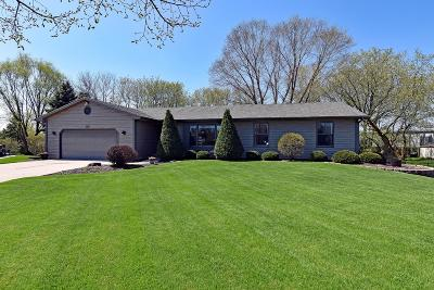 Kenosha County Single Family Home Active Contingent With Offer: 801 Maureen Ct