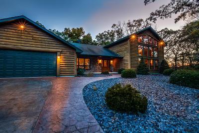 Kenosha County Single Family Home For Sale: 27735 41st St