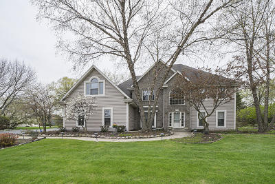 Single Family Home Active Contingent With Offer: 20265 Downing Ct
