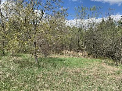 Mukwonago Residential Lots & Land For Sale: W315s6045 Dable Rd #Lt1