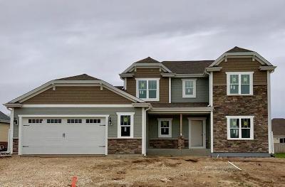 Hartford Single Family Home For Sale: 1102 Durango Dr