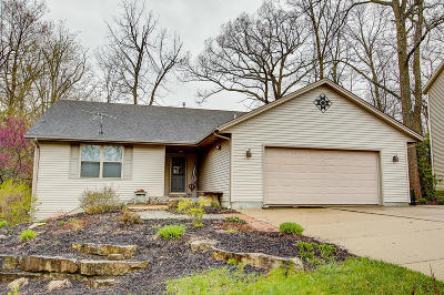 Waterford Single Family Home Active Contingent With Offer: 30415 Barnes Ln #.