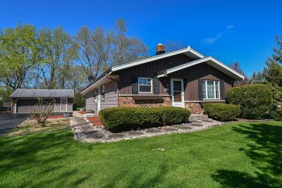Muskego Single Family Home Active Contingent With Offer: W191s7675 Racine Ave