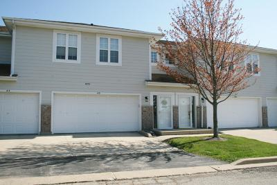 Pleasant Prairie WI Condo/Townhouse Active Contingent With Offer: $183,000