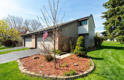 Oak Creek Condo/Townhouse Active Contingent With Offer: 7345 S Delaine Dr
