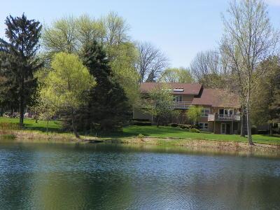 Kenosha County Single Family Home For Sale: 216 Evergreen Ln