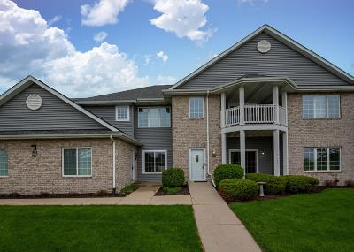 Belgium, Cedar Grove, Howards Grove, Kohler, Oostburg, Plymouth, Port Washington, Random Lake, Saukville, Sheboygan, Sheboygan Falls Condo/Townhouse For Sale: 291 La Roche Ln