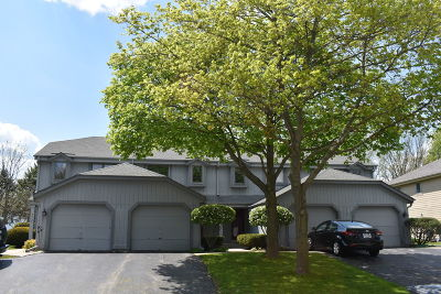 Condo/Townhouse Active Contingent With Offer: 2418 Willowood Dr #B