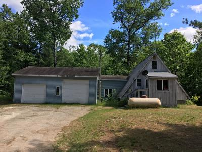 Marinette County Single Family Home For Sale: W4991 State Highway 180