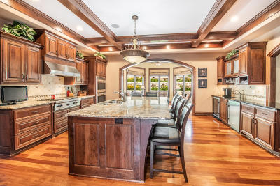 Waukesha County Single Family Home For Sale: 376 Legend View