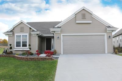 West Bend Single Family Home For Sale: 341 Brookview Dr