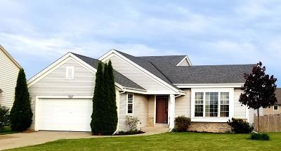 Elkhorn Single Family Home Active Contingent With Offer: 907 N Michael Ct