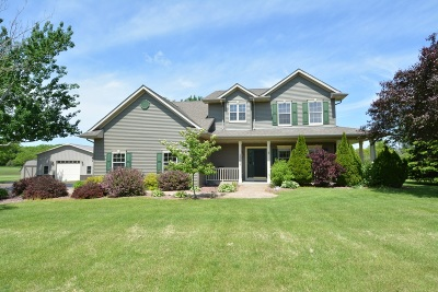 Racine County Single Family Home For Sale: 25624 White Tail Ct