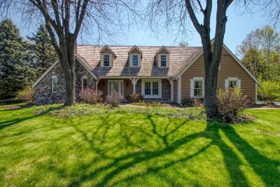 Delafield Single Family Home For Sale: N7w29575 Thames Ct