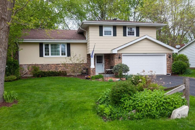 Brookfield Single Family Home Active Contingent With Offer: 21340 Lancelot Dr