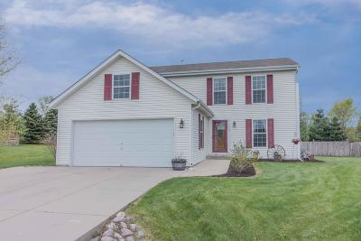 Slinger Single Family Home For Sale: 3840 Riegle Ct