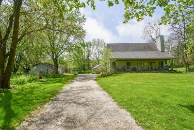 Dousman Single Family Home Active Contingent With Offer: S34w34601 County Road C