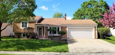 Waukesha Single Family Home Active Contingent With Offer: 1244 Lambeth Rd