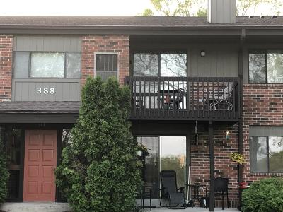 Pewaukee Condo/Townhouse For Sale: 388 Park Hill Dr #H