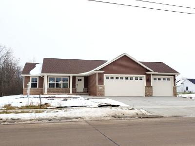 Single Family Home For Sale: 3016 Loderbauer Road