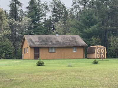 Pembine Single Family Home For Sale: N18330 Us Hwy 141