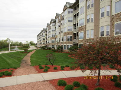 Franklin Condo/Townhouse For Sale: 6955 S Riverwood Blvd #104