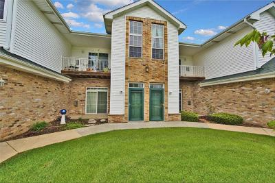 Racine County Condo/Townhouse Active Contingent With Offer: 4237 Taylor Habor W #5